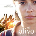 El Olivo. Película dirigida por Iciar Bollain y escrita por Paul Laverty. Anna Castillo, Javier Gutiérrez y Pep Ambròs protagonizan esta historia producida por Morena Films.